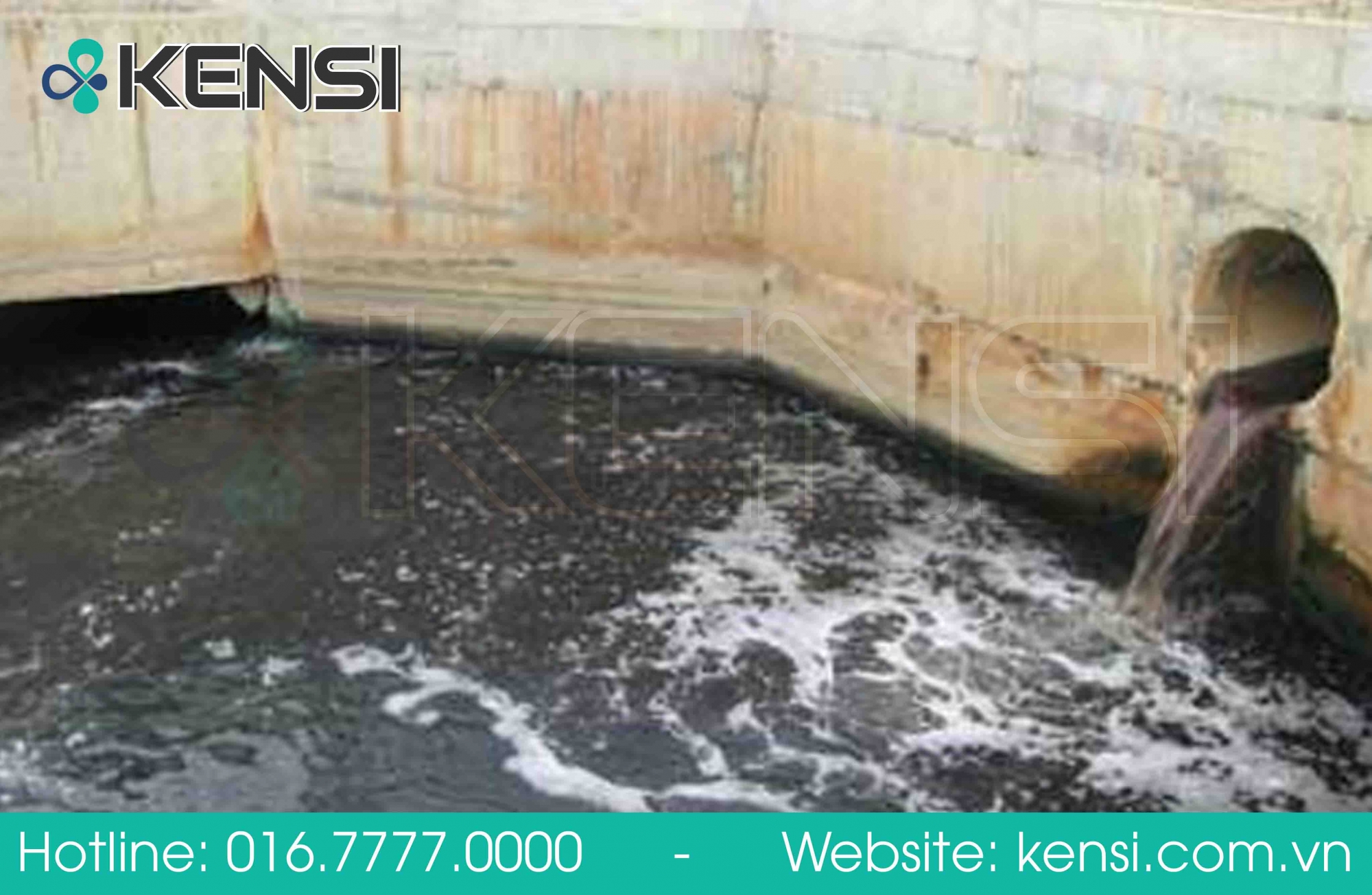Nước thải nhà máy chưa qua xử lý đã xả thải ra môi trường